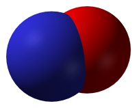 Three-dimensional model of NO by Benjah-bmm27 is in the Public Domain - http://commons.wikimedia.org/wiki/File:Nitric-oxide-3D-vdW.png